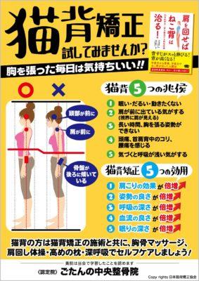 日本猫背矯正協会認定院
